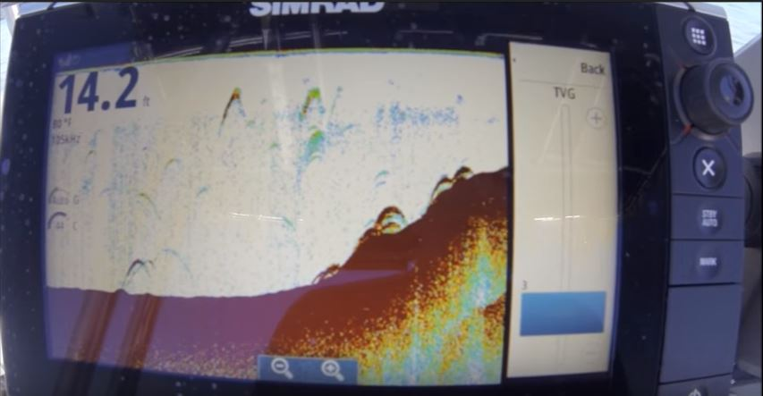 what do fish look like on a fish finder